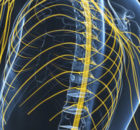 Neurological NCLEX questions